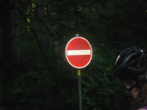Gegen die EInbahnstrasse im Wald gibt doppelte Punkte in Flensburg